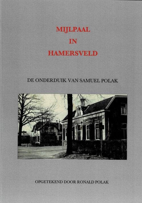 Mijlpaal in Hamersveld- cover boek
